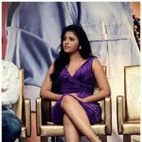 Anjali (Actress) - Balupu Movie Success Meet Photos | Picture 501650