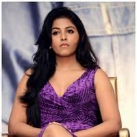 Anjali (Actress) - Balupu Movie Success Meet Photos | Picture 501653