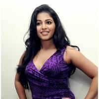 Anjali (Actress) - Balupu Movie Success Meet Photos | Picture 501589