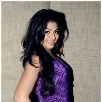Anjali (Actress) - Balupu Movie Success Meet Photos | Picture 501593