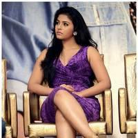 Anjali (Actress) - Balupu Movie Success Meet Photos | Picture 501666
