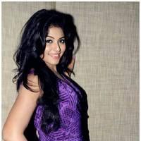 Anjali (Actress) - Balupu Movie Success Meet Photos | Picture 501597
