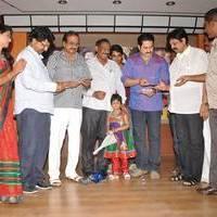 Gandikota Rahasyam Audio Launch Function Photos | Picture 503815