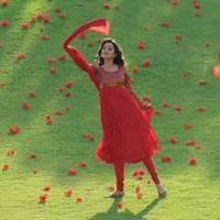 Nisha Agarwal - Saradaga Ammayitho Movie Song Photos