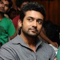 Surya Sivakumar - Singam (Yamudu 2) Success Meet Photos | Picture 503729