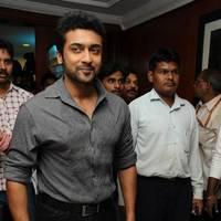 Suriya - Singam (Yamudu 2) Success Meet Photos | Picture 503760