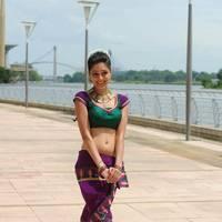 Parvathi Melton Hot Photos | Picture 508425