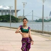 Parvathi Melton Hot Photos | Picture 508442