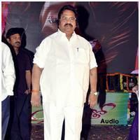 Dasari Narayana Rao - Saradaga Ammayilatho Audio Release Function Photos | Picture 450323