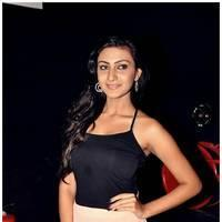 Neelam Upadhyay - Action 3d Press Meet and Songs Projection Photos   Picture 455749