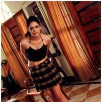 Parvati Melton Hot in Srimannarayana Photos | Picture 460519