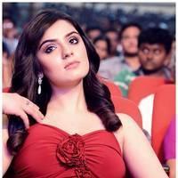 Lucky Sharma - Paisa Movie Audio Release Photos