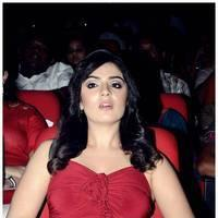 Lucky Sharma - Paisa Movie Audio Launch Photos | Picture 462197