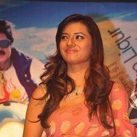 Isha Chawla - Srimannarayana Movie Audio Release Pictures