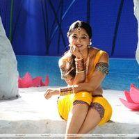 Anushka Shetty - Bad Boy Telugu Movie Photos