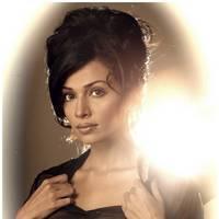 Asha Saini Hot Photoshoot Stills