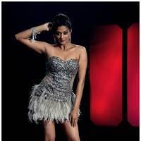 Priyamani Hot Images from Chandi Movie