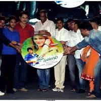 Prema Prayanam Movie Audio Release Function Stills | Picture 499978
