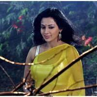 Flora Saini - Aakasam lo Sagam Movie Working Stills   Picture 501116