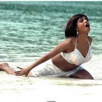 Meghna Patel New Spicy Photos   Picture 504709