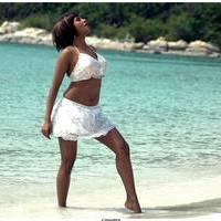 Meghna Patel New Spicy Photos   Picture 504714