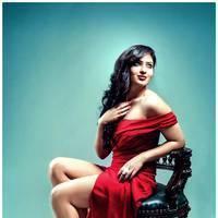 Nikisha Patel New Hot Images | Picture 506900
