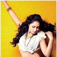Nikisha Patel New Hot Images | Picture 506901