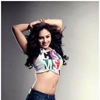 Nikisha Patel New Hot Images | Picture 506903
