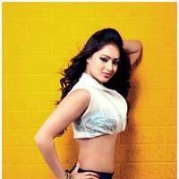 Nikisha Patel New Hot Images | Picture 506904