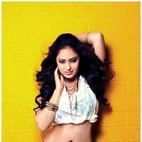 Nikisha Patel New Hot Images | Picture 506905