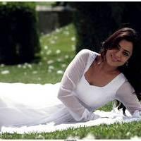 Nisha Agarwal Latest Cute Pictures | Picture 511698