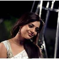 Nisha Agarwal Latest Cute Pictures | Picture 511699