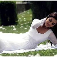 Nisha Agarwal Latest Cute Pictures | Picture 511702