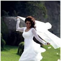 Nisha Agarwal Latest Cute Pictures | Picture 511703