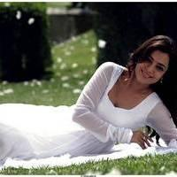Nisha Agarwal Latest Cute Pictures | Picture 511704