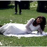 Nisha Agarwal Latest Cute Pictures