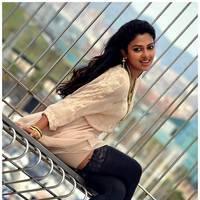 Amala Paul New Photos from Iddarammayilatho Movie | Picture 512910