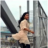 Amala Paul New Photos from Iddarammayilatho Movie | Picture 512920