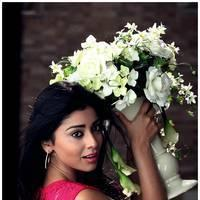 Shriya Saran Latest Pictures | Picture 512651
