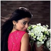 Shriya Saran Latest Pictures | Picture 512655