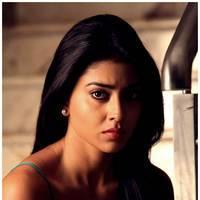 Shriya Saran Latest Pictures | Picture 512656