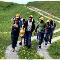 Attarintiki Daredi Movie Photos | Picture 513352