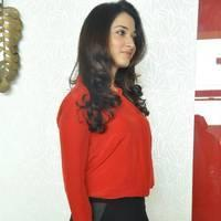 Tamanna Latest Photos at Thadaka Movie Press Meet   Picture 452274