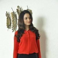 Tamanna Latest Photos at Thadaka Movie Press Meet   Picture 452275