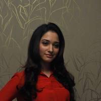 Tamanna Latest Photos at Thadaka Movie Press Meet   Picture 452277