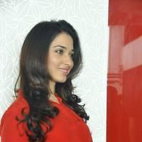 Tamanna Latest Photos at Thadaka Movie Press Meet   Picture 452281