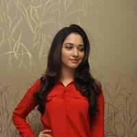 Tamanna Latest Photos at Thadaka Movie Press Meet   Picture 452282