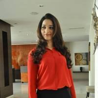 Tamanna Latest Photos at Thadaka Movie Press Meet   Picture 452283