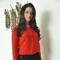Tamanna Latest Photos at Thadaka Movie Press Meet   Picture 452287