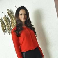 Tamanna Latest Photos at Thadaka Movie Press Meet   Picture 452288